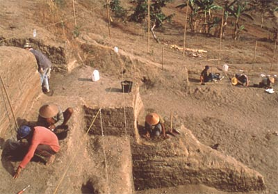 Excavations of a 800,000 years living floor, Ngebung site, Java. Copywright Mission Quaternaire et Pr�histoire en Indon�sie, France